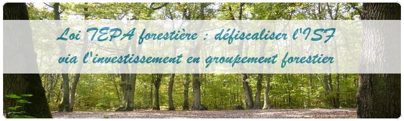 Défiscalisation ISF en groupement forestier
